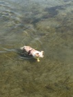 Me in the lake!